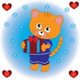 Kot utrzymuje prezent w jego łapach Fotografia Stock