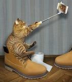 Kot w buta wp8lywy selfie ilustracja wektor