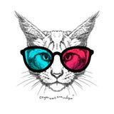 Kot w 3D szkłach Fotografia Royalty Free