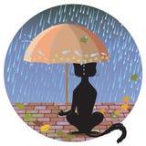 Kot w deszczu ilustracja wektor