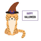 Kot w Halloweenowym kapeluszu Zdjęcie Royalty Free