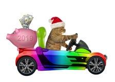 Kot w koloru samochodzie z prosiątko bankiem ilustracja wektor