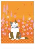 Kot w ogródzie Zdjęcia Royalty Free