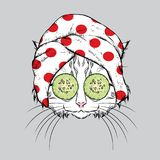 Kot w ręczniku z ogórkiem na jego twarzy i również zwrócić corel ilustracji wektora Piękna i zdroju traktowania Moda & styl zabaw ilustracji