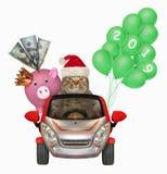 Kot w samochodzie z prosiątko bankiem, balonami i obrazy royalty free
