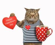Kot z kawą i sercem zdjęcie stock