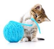 Kot z piłką przędza Obraz Royalty Free