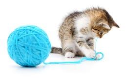 Kot z piłką przędza Fotografia Royalty Free