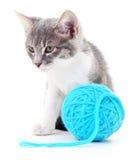 Kot z piłką przędza Obrazy Royalty Free