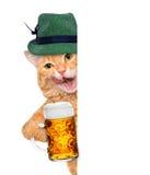 Kot z piwnym kubkiem Zdjęcia Royalty Free