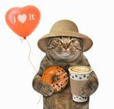 Kot z pomarańczowym pączkiem i balonem fotografia royalty free