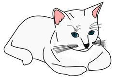 kota biel Zdjęcia Royalty Free