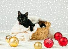 kota bożych narodzeń ilustracyjna kiciuni śniegu płatka śniegu zima Fotografia Stock