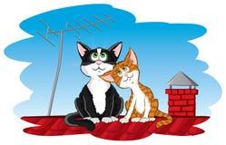 kota dach ilustracji