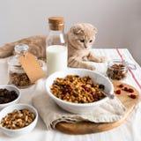Kota i śniadania Granola muesli z, słuzyć z migdału mlekiem na białym bieliźnianym stołowym płótnie fotografia royalty free