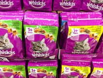 Kota jedzenie Dla sprzedaży Na Zwierzęcym supermarketa stojaku Fotografia Royalty Free