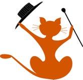 kota kij galanteryjny kapeluszowy Obrazy Stock