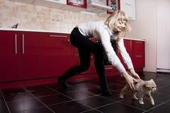 kota kuchni kobieta Obraz Stock