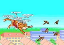 Kota latanie w niebie Zdjęcie Royalty Free