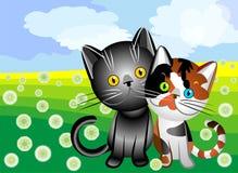 kota miłości s wektor ilustracji