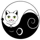 kota myszy Yan yin Zdjęcie Stock