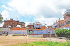 Kota pałac i ziemia ind zdjęcia royalty free