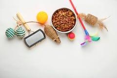 Kota ` s jedzenie na białym tle i akcesoria Obraz Stock
