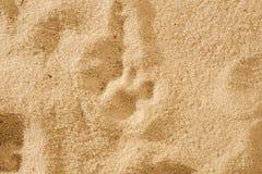Kota ` s odcisk stopy w miękkim piasku Fotografia Stock