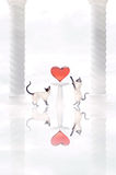 kota serce dwa Obraz Stock