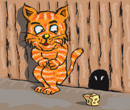 kota szczur Obraz Stock