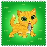 Kota traken Imbirowy kot Zdjęcie Stock