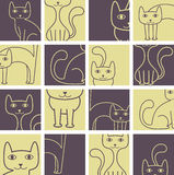 kota wzór Obrazy Stock