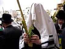 Kotel - Israël Royalty-vrije Stock Foto's