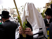 Kotel, Izrael - Zdjęcia Royalty Free