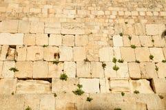 Kotel jérusalem Images libres de droits