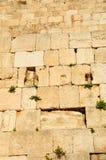 Kotel jerusalén Fotografía de archivo libre de regalías