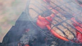 Kotelet van gebraden vlees bij de grill met Bulgaarse rode paprika stock video