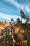 Kotka Royalty Free Stock Photo
