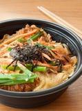 Kotlettpork med ägget på rice, tonkatsu Arkivbilder