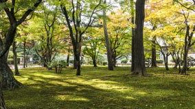 Kotoji Lantern in Kenrokuen garden Stock Images