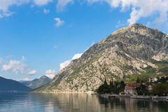 Kotor bay in Montenegro. Morning view of Kotor bay in Montenegro Stock Photography