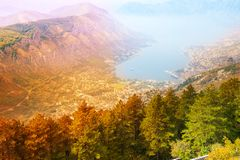 Kotor city from above Royalty Free Stock Photos