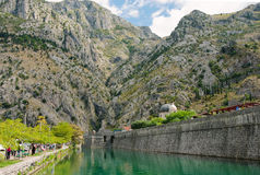 Kotor city walls. The view to the Kotor city walls from the river side in Montenegro Stock Photos