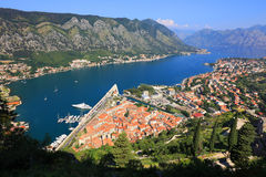 Kotor Fortress in Montenegro Royalty Free Stock Photography