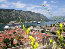 Kotor, Montenegro Foto de archivo