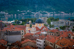 Kotor old town ant cathedral night view Stock Images