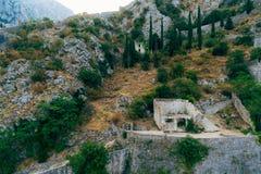 kotor starego miasta Kotor ściana Ściana wokoło miasta dalej Obrazy Stock