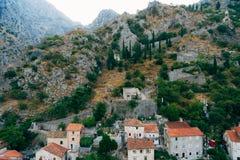 kotor starego miasta Kotor ściana Ściana wokoło miasta dalej Fotografia Royalty Free