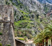 Kotor Walls Montenegro. The old Mediterranean port of Kotor is surrounded by fortifications built during the Venetian period. It is located on the Bay of Kotor stock photography