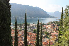 Kotorbaai, Montenegro Stock Foto